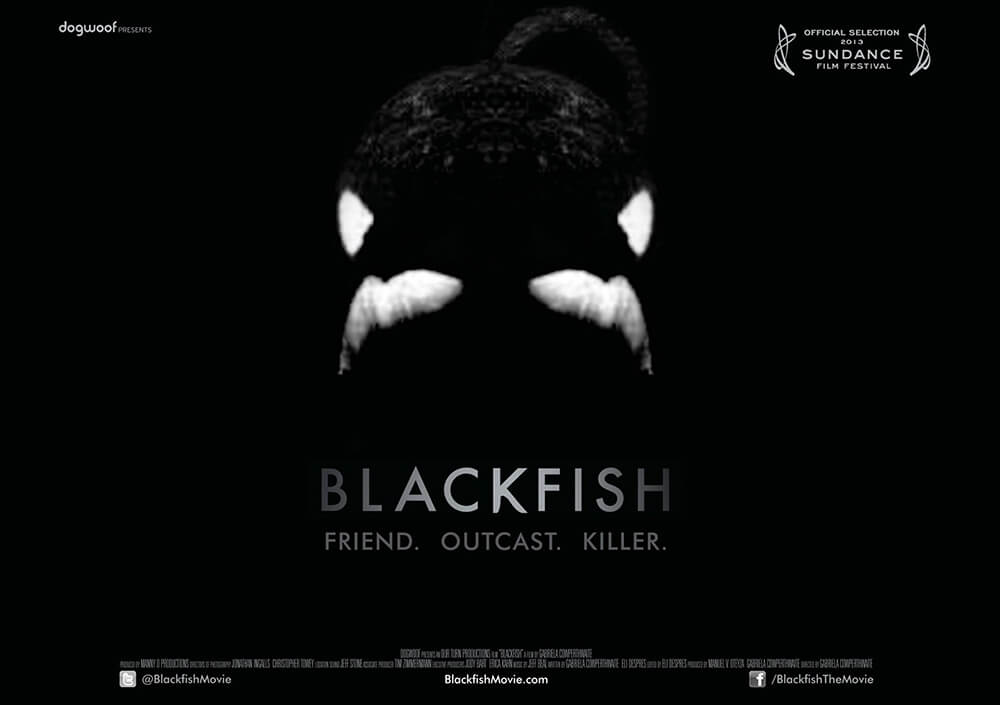 hosting_the_cast_and_crew_of_Blackfish_2014
